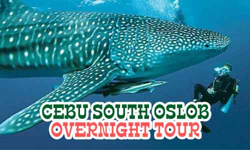 cebu south oslob overnight tour